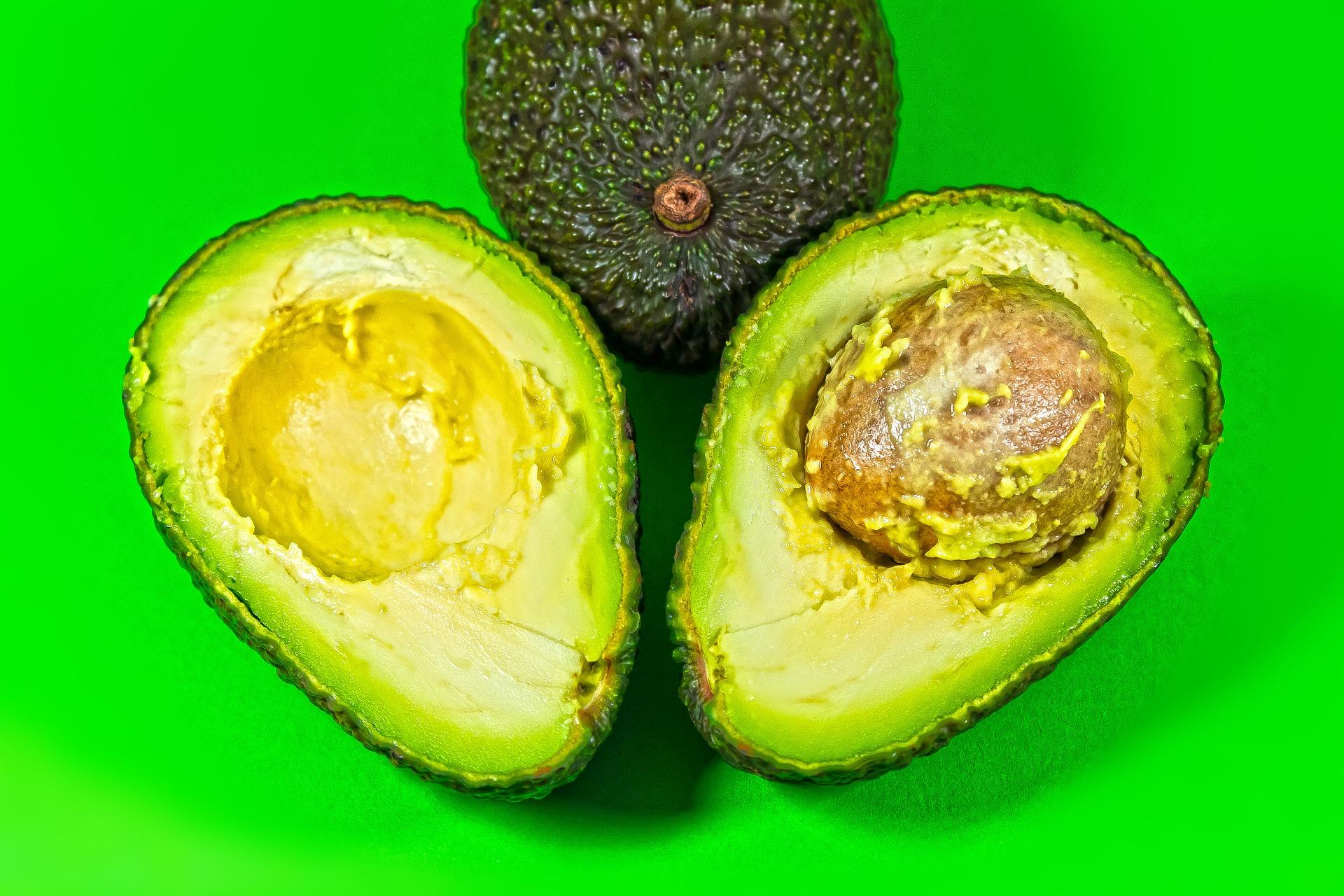 avocado-3900461_1920